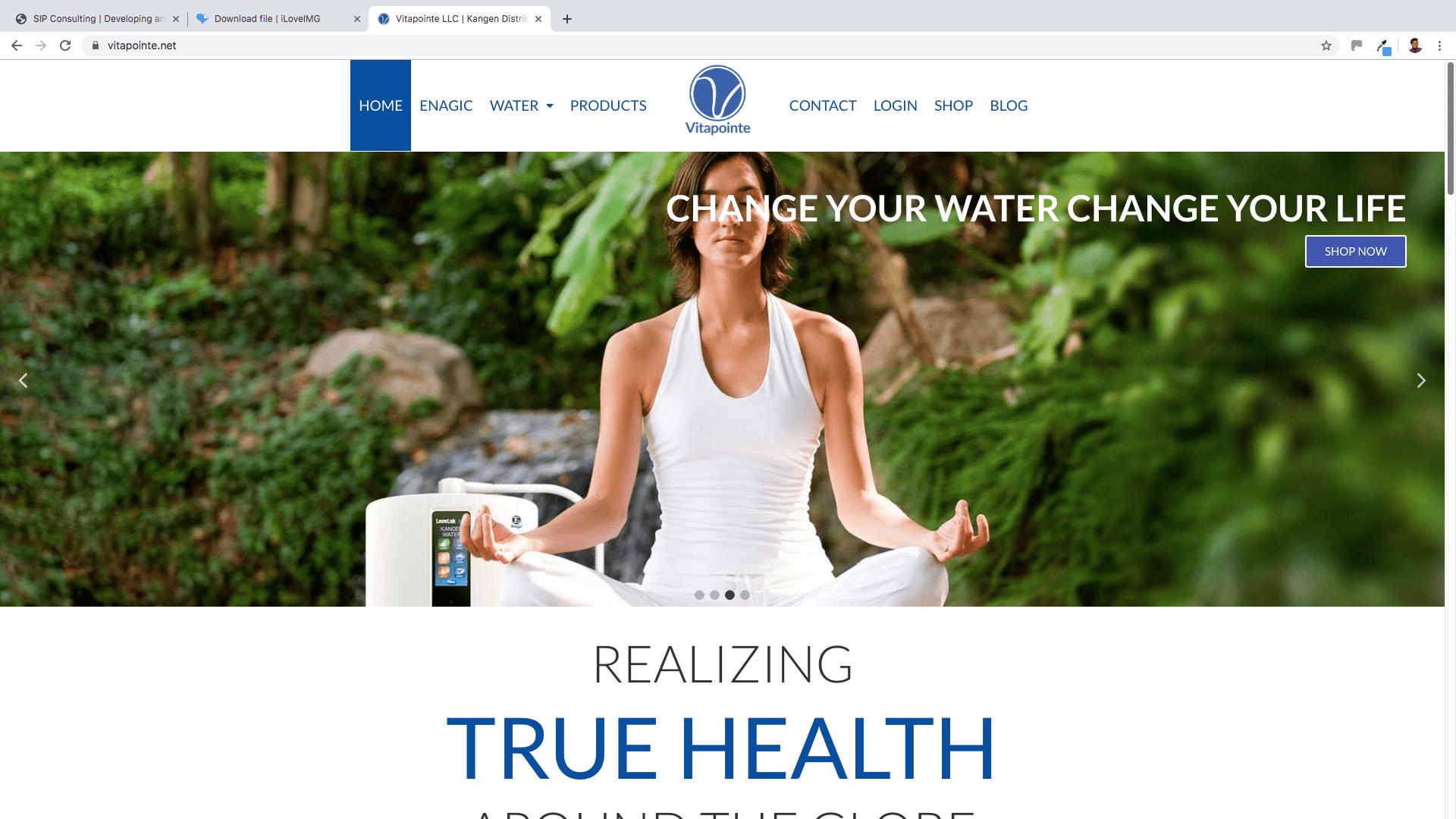 Vitapointe E-commerce Website